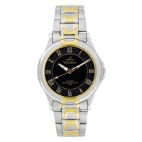 AMARANTH TWO TONE STAINLESS STEEL ANALOG WATCH